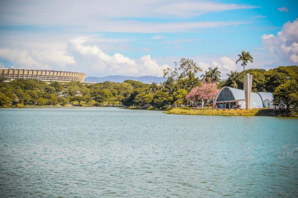 Burle Marx et le jardin à la brésilienne