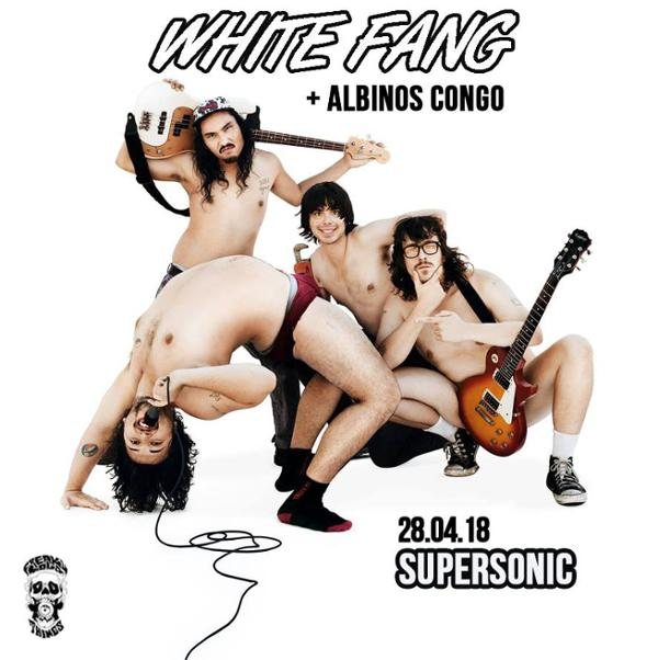 White fang x albinos congo / supersonic / 28.04.18