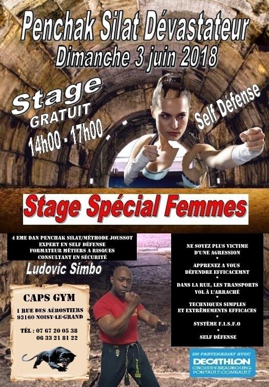 Stage Penchak Self défense spécial femmes