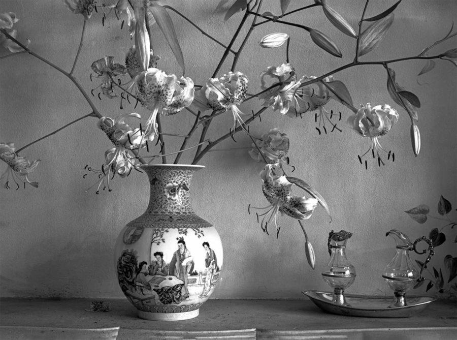 Floraison, exposition de photographies