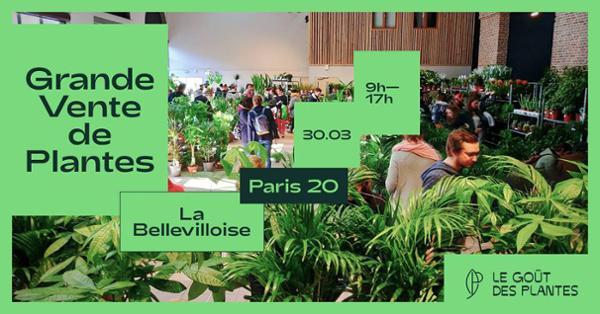 GRANDE VENTE DE PLANTES DES 2€
