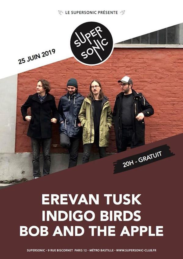 Erevan Tusk • Indigo Birds • Bob and the Apple / Supersonic