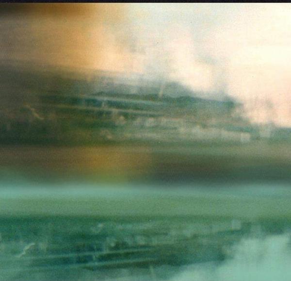 Basset Hounds / The Belmondos / The Belmondos