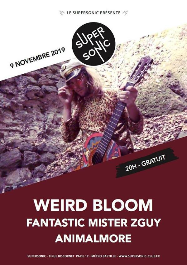 Weird Bloom • Fantastic Mister Zguy • Animalmore / Supersonic