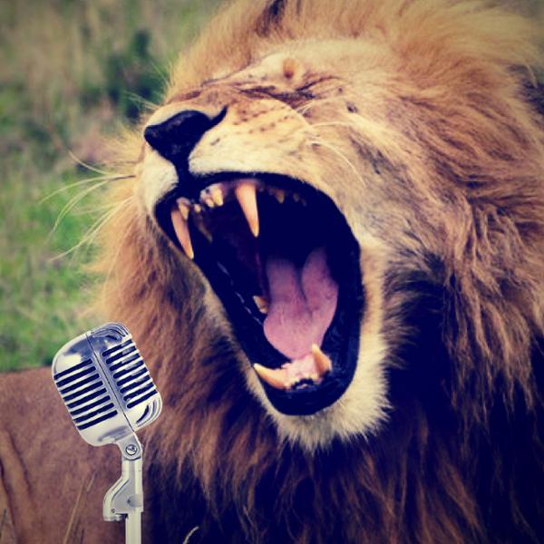 The Best Karaoke in the World