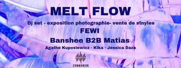 MELT FLOW 02