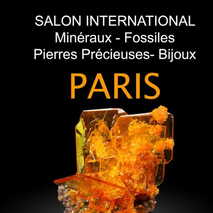 Salon international, minéraux, fossiles, gemmes, bijoux Paris
